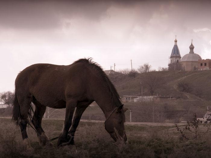 Ненастное утро в Новочеркасске