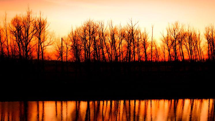 Красное утро
