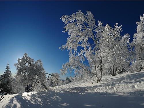 snegopad1