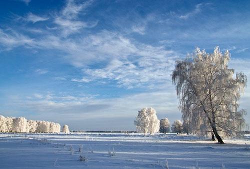 Зима. Фото Аркадия Деева