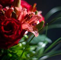 Доставка цветов Петербург. Фото с сайта www.florego.ru