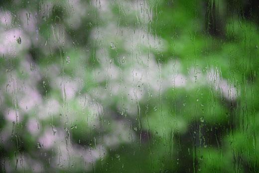 Дождь за окном. Фото Romaha.su