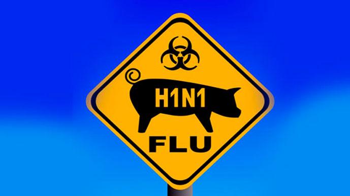 Свиной грипп добрался до России