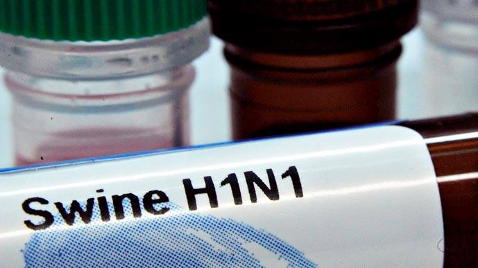 Свиной грипп: второе пришествие