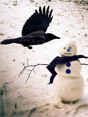 Ворона и снеговик
