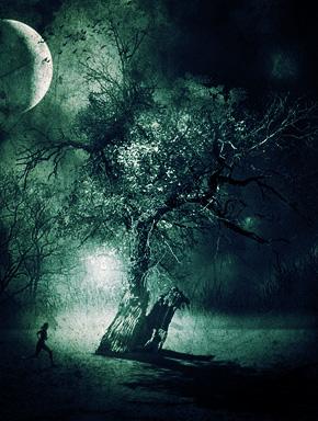Сон в лунную ночь