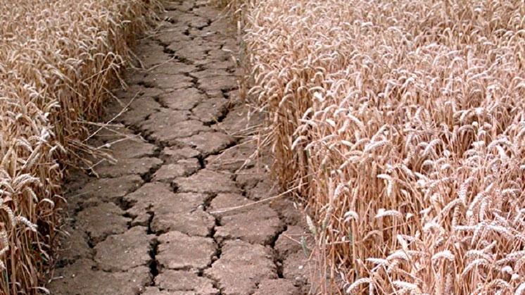 Климатическая война