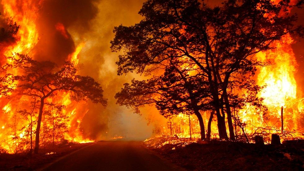 Пожары грядут?