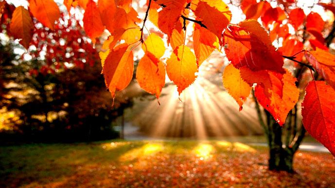 За окном — октябрь