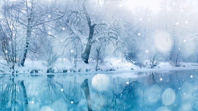 В студёную зимнюю пору